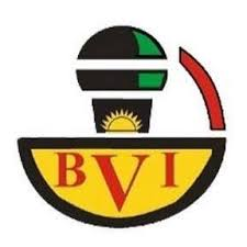 Breaking : Good Governance Ministry Working With BVI Channel 1 Launches Online Poll For Nov 6 Election